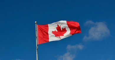 Canadian Flag picture