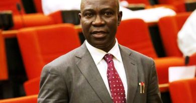 Ekweremadu, Politics, News