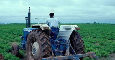 Kebbi State farming